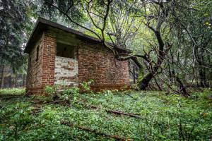 Die Fortsetzung zu 'Haunted' spielt tief im dunklem Muna-Forest.